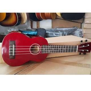 ukulele gitar aloha