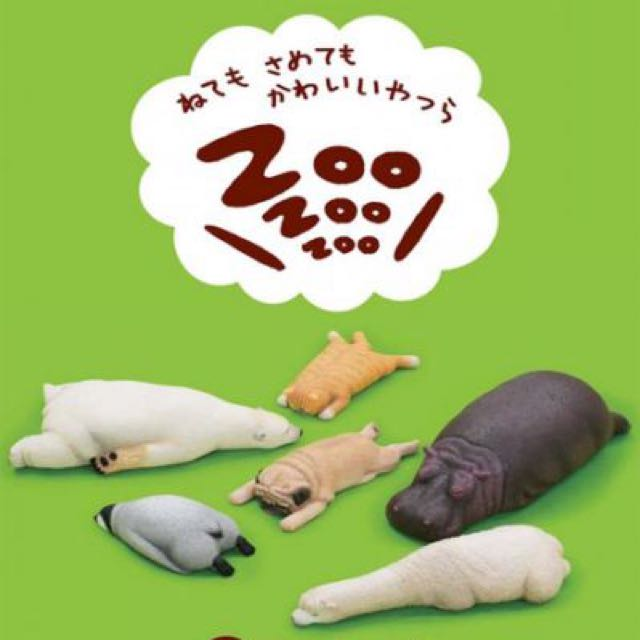 休眠動物園 河馬