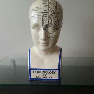 Phernology Decor
