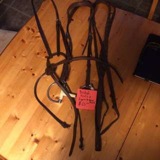 Bridal, Reins, And Figure 8 Nose Band Like New!