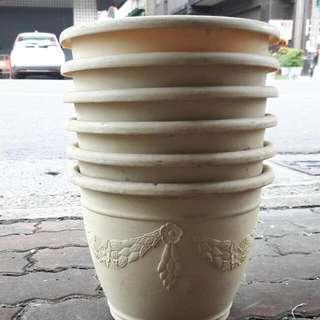 盆栽 盆子(60元/個)