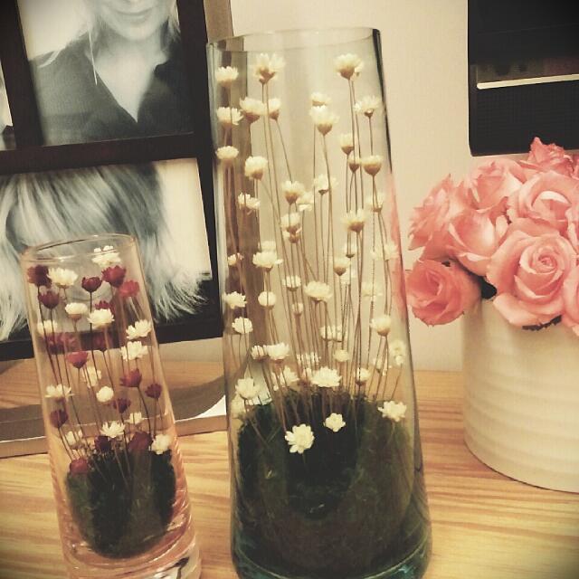 乾燥花飾~花朵開合會隨濕度改變哦!