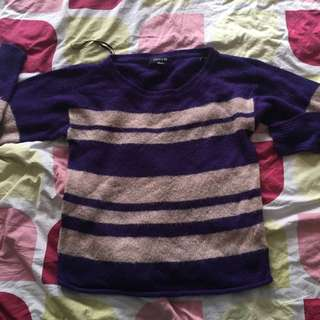 Purple Sweater from F21