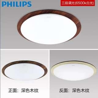 Brand New Phillips Ceiling Light
