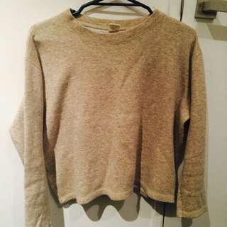 Beige Crop Knit