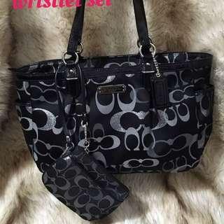 Coach Medium purse And wristlet