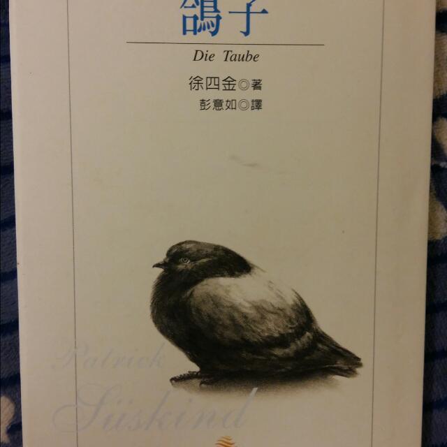 《鴿子》,徐四金