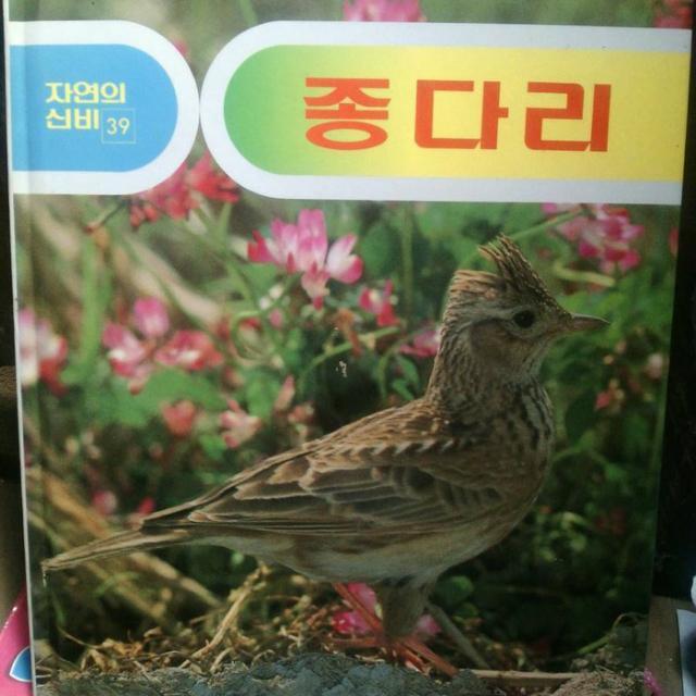 Buku Bekas Berbahasa Korea