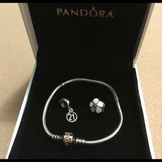 UPDATED: Pandora Bracelet AND 2 charms