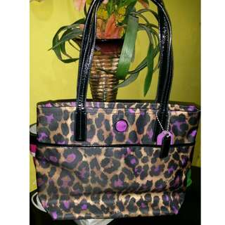 Coach Leopard Limited Ed. (Authentic)