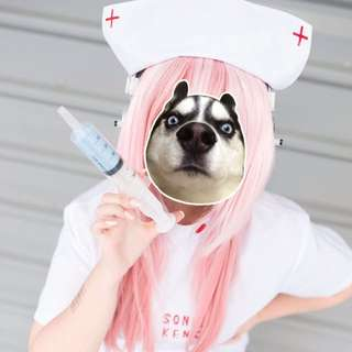 [FAST DEAL]Super Sonico White Nurse Version Cos