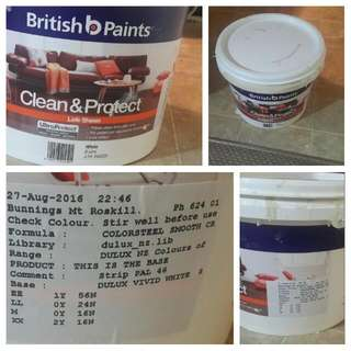British Paints: DELUX VIVID WHITE