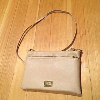 Colette Crossbody Cluth Bag