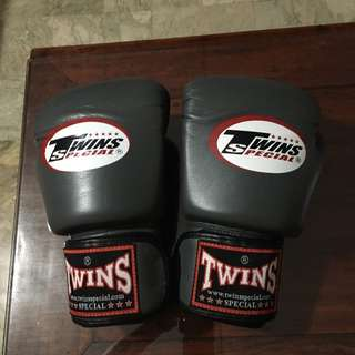 Twins Authentic Boxing Gloves