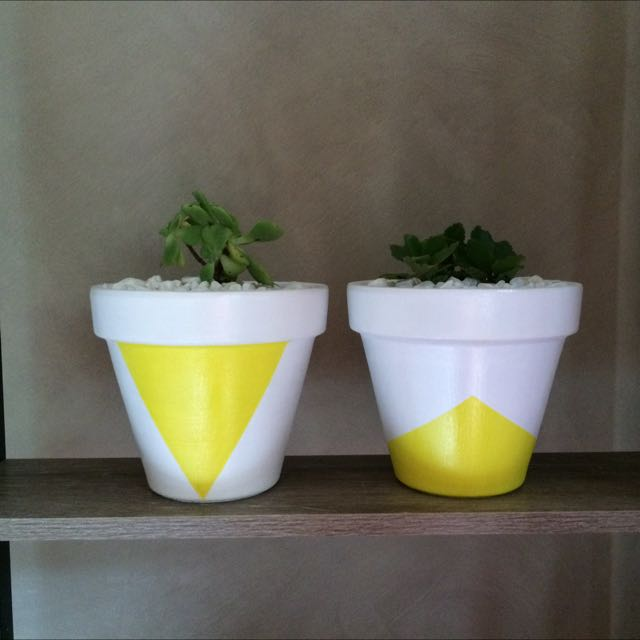 Hand Painted Pots With Plants