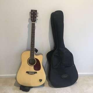 Artist Guitar