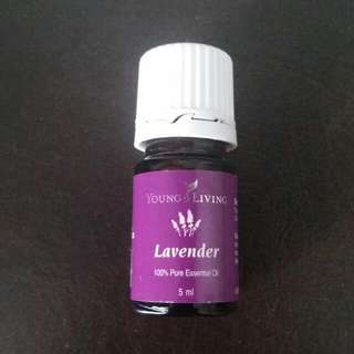 Lavender Essential Oil 5ml Young Living