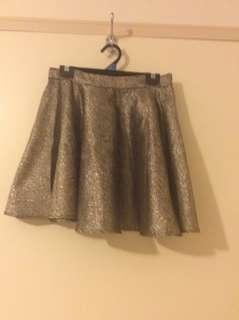Shimmery Mini Skirt