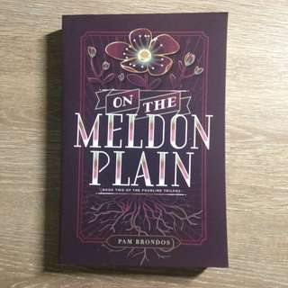 BN - On The Meldon Plain