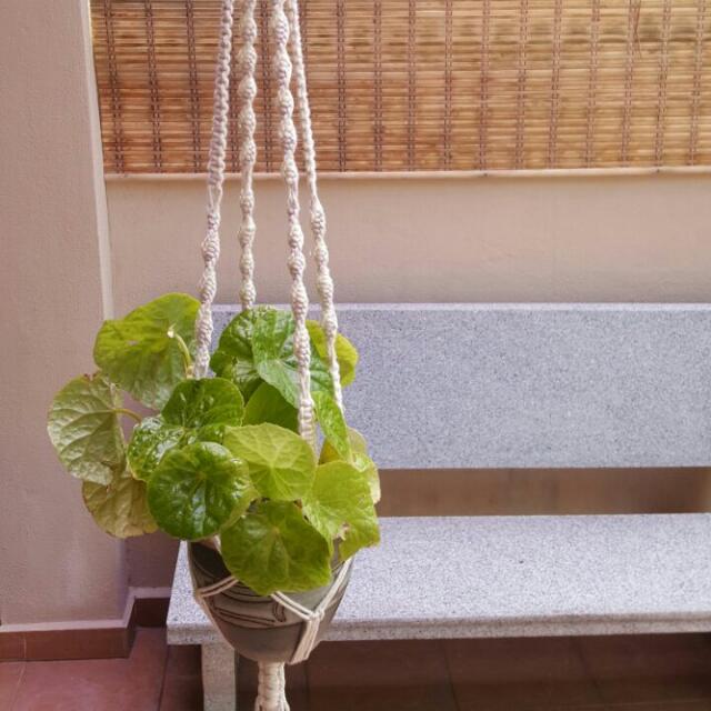 Handmade Macrame Pot Hanger- Blossom