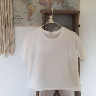Brandy Melville Basic Cropped T Shirt