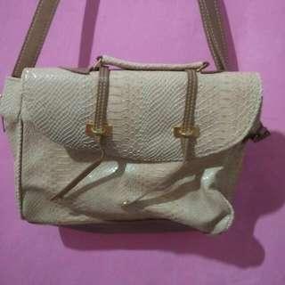 Croco Bag