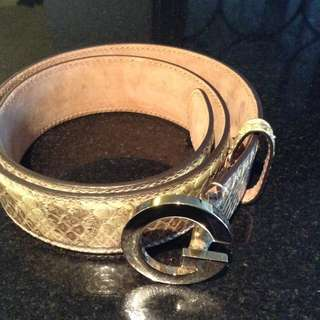 Authentic Gucci Phyton Belt
