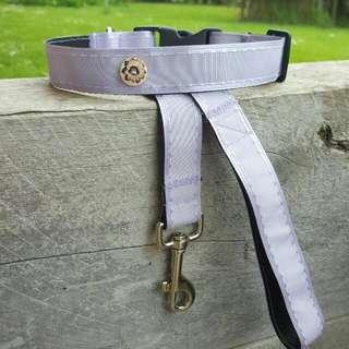 Purple Lead And Collar Set.