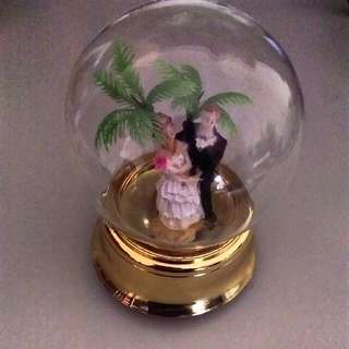 Spin Wedding Couple Globe With Music