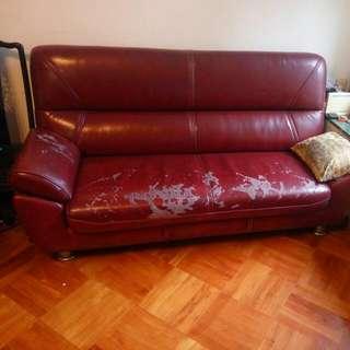 free sofa 免費梳化床