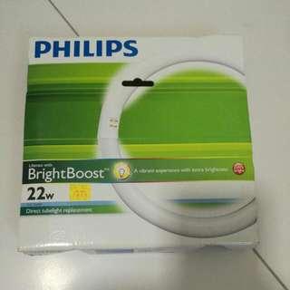 Philip Tubelight 22w Circular