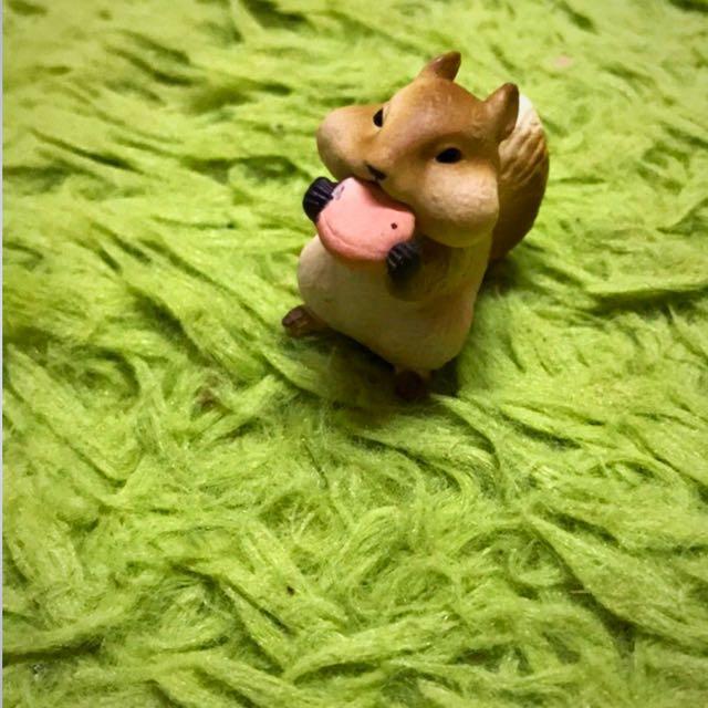 [換or售]愛吃鬼動物 扭蛋 松鼠🐿️