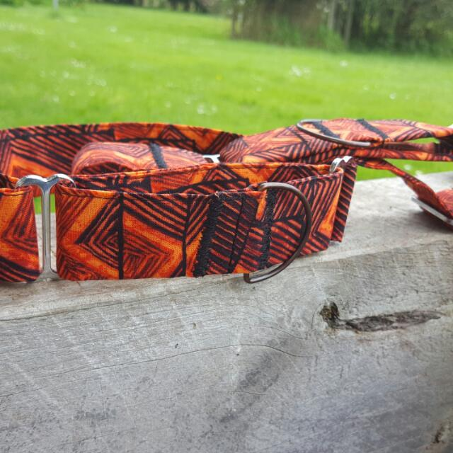 Orange Africa Martingale Dog Collar