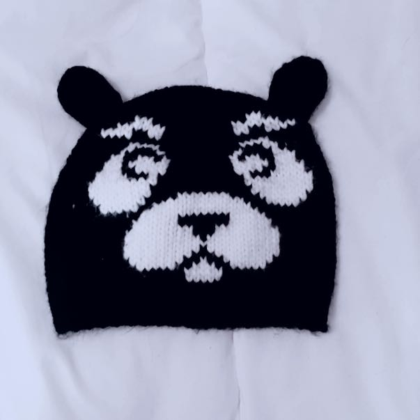 Hollister Teddy Bear Toque