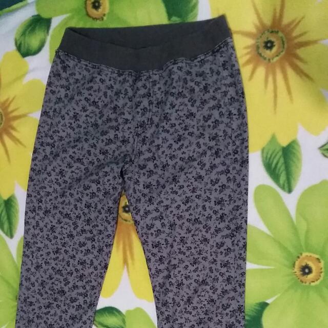 Uniqlo Printed Gray Pants