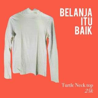 Turtleneck Stripe top