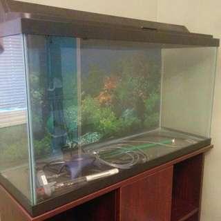 Aquarium With Stand & Accessories