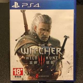 The Witcher Wild Hunt 巫師狂獵