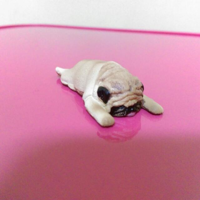 扭蛋 休眠動物系列 巴哥