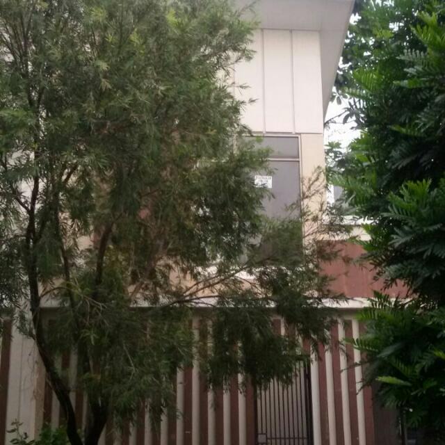 Disewakan Rumah Di Foresta BSD