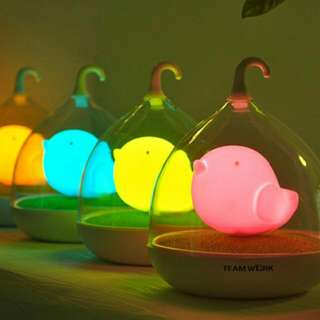 Touch Led Lamp