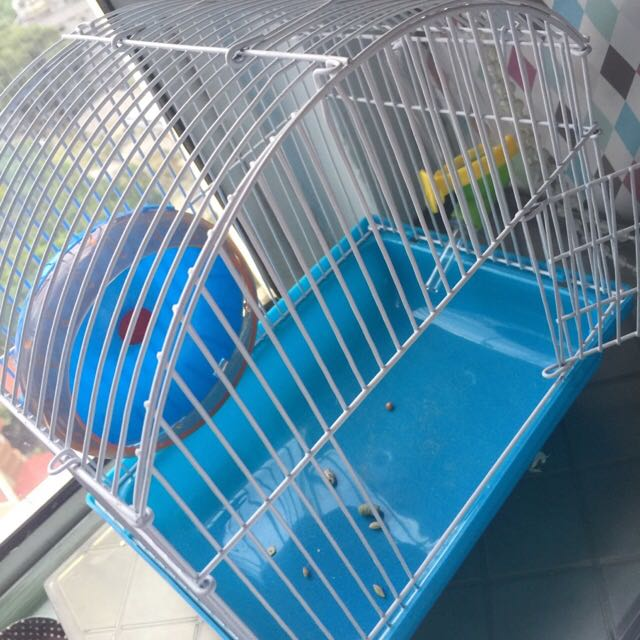 Hamster Cage (free Toys)