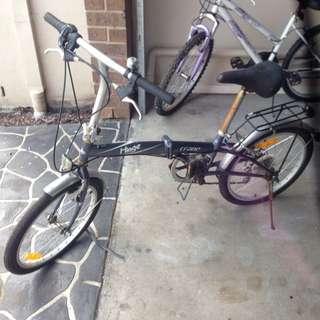 Crane Hinge Bike