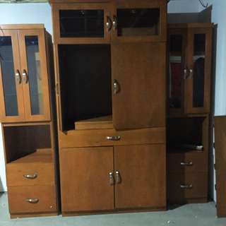 Costume Tv Unit