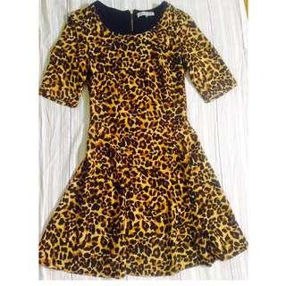 Leopard Bershka Collection