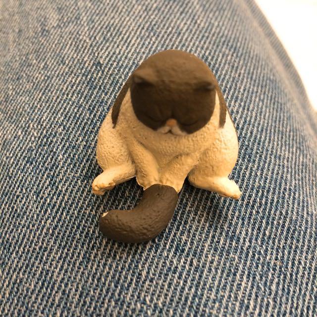 睡眠系列💕貓咪第三彈
