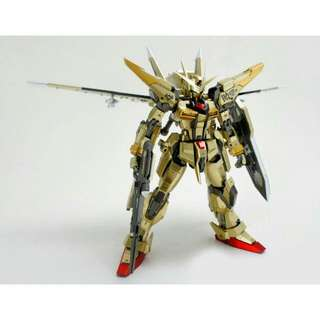 Dragon Momoko DM MG Akatsuki Gundam