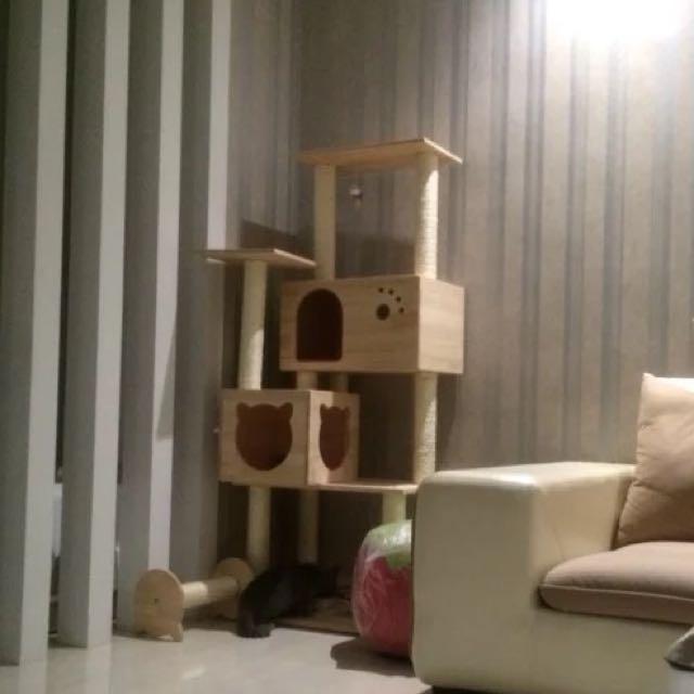 貓跳台 貓窩 貓架