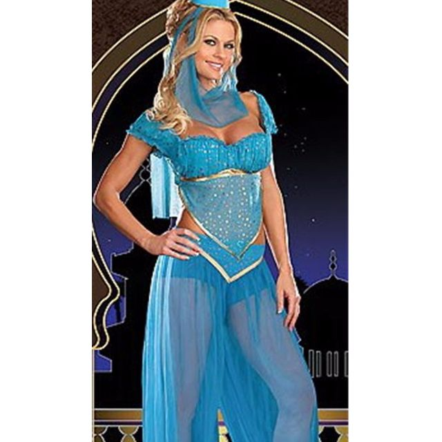 Arabian Genie Aladdin Princess Jasmine Disney Fancy Costume Blue Dress