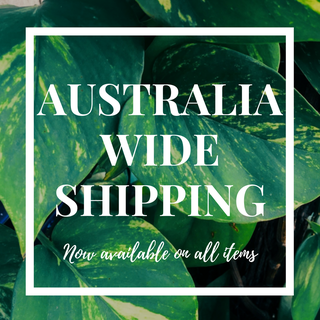 NOW SHIPPING EVERYTHING AUSTRALIA WIDE